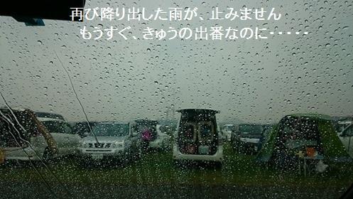 雨が止みません