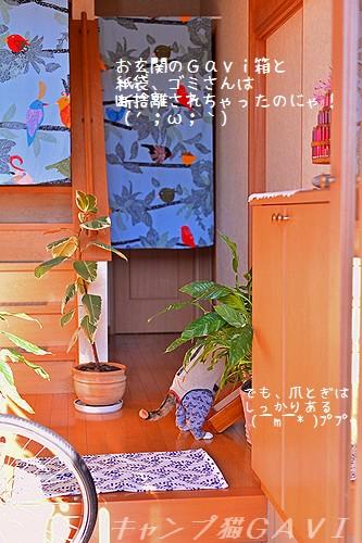 141205_2010a.jpg
