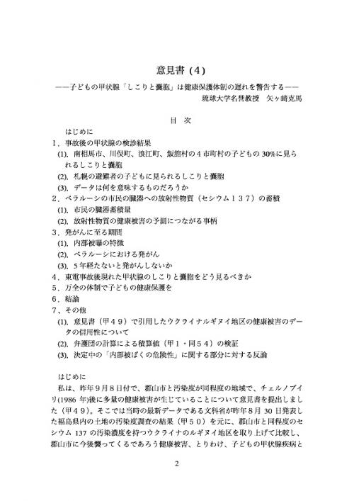 矢ケ崎克馬2