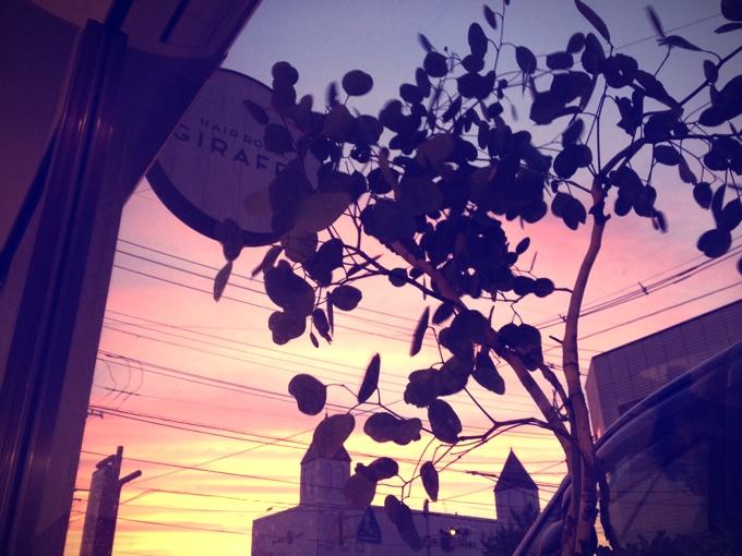 fc2blog_201310050832007e1.jpg