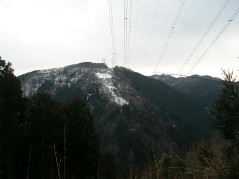 P2010019.jpg