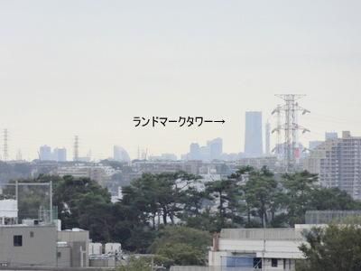 DSC00473-001.jpg