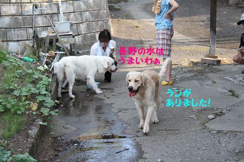 20110817-3_R.jpg