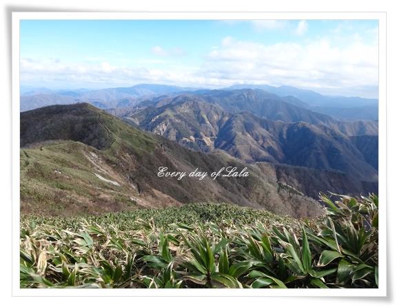 金草岳201412
