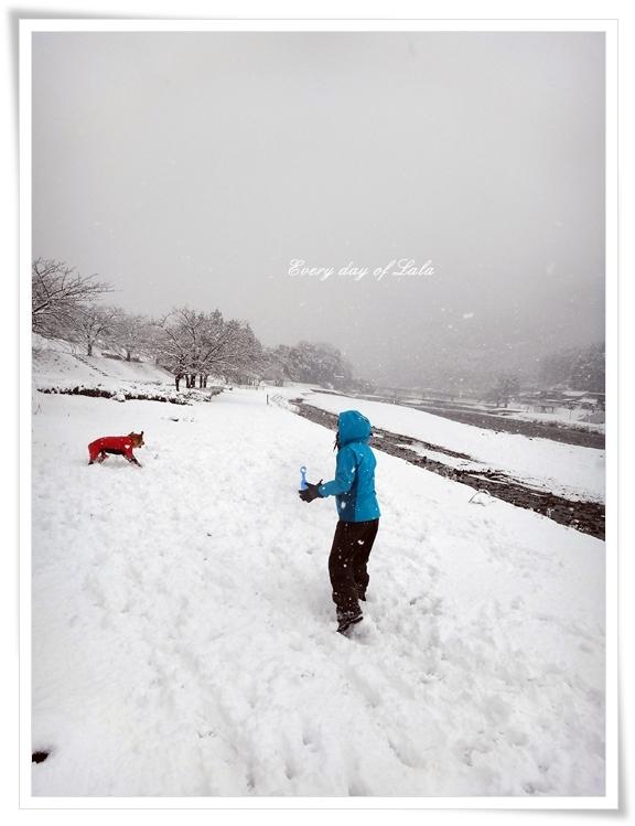 雪遊びへ201412
