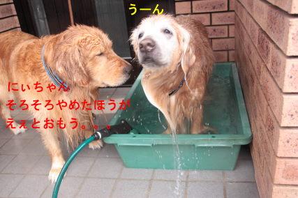 IMG_7001.jpg
