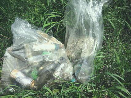 渡良瀬川河川敷の清掃事業