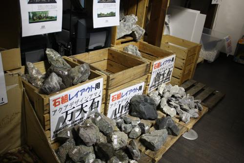 万天石、龍王石 東海 岐阜 熱帯魚 水草 観葉植物販売 Grow aquarium