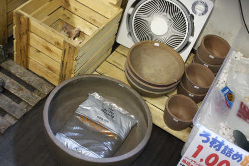 ADA陶器鉢 東海 岐阜 熱帯魚 水草 観葉植物販売 Grow aquarium