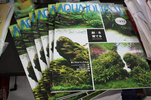 アクアジャーナル入荷 東海 岐阜 熱帯魚 水草 観葉植物販売 Grow aquarium