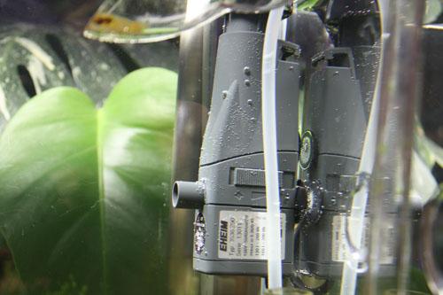油膜取り 東海 岐阜 熱帯魚 水草 観葉植物販売 Grow aquarium