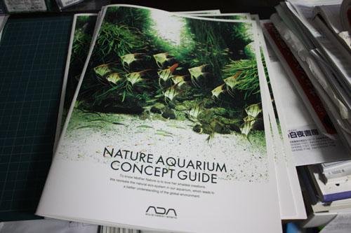NATURE AQUARIUM CONCEPT GUIDE東海 岐阜 熱帯魚 水草 観葉植物販売 Grow aquarium