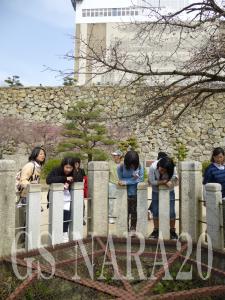 13-3月姫路神戸シニア2