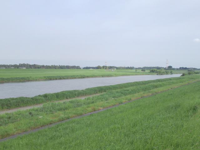 20120613003.jpg