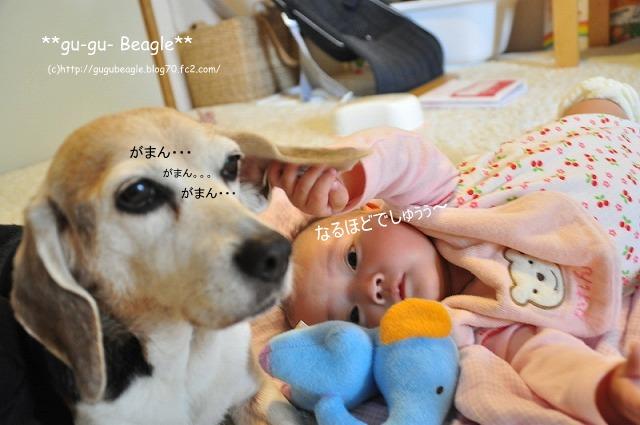 10_20120504225648.jpg
