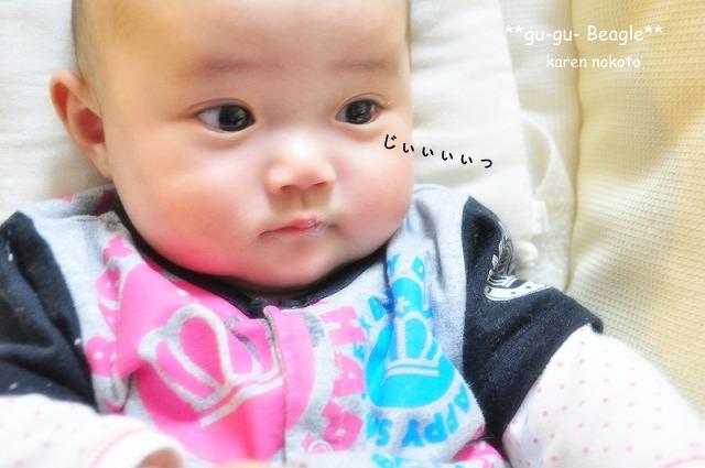 11_20120505234113.jpg