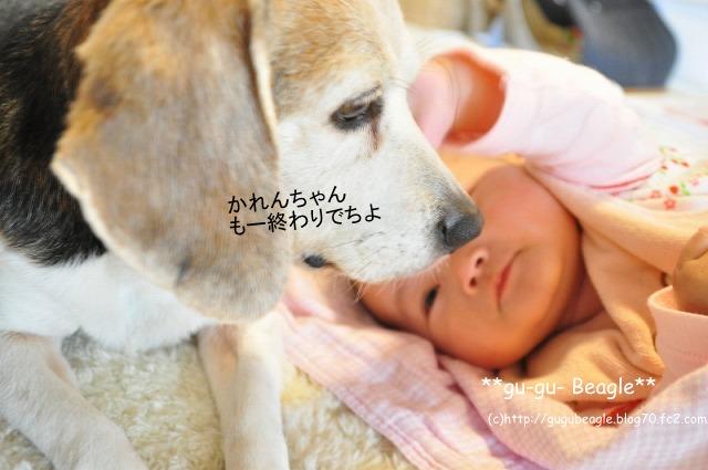 14_20120504230109.jpg