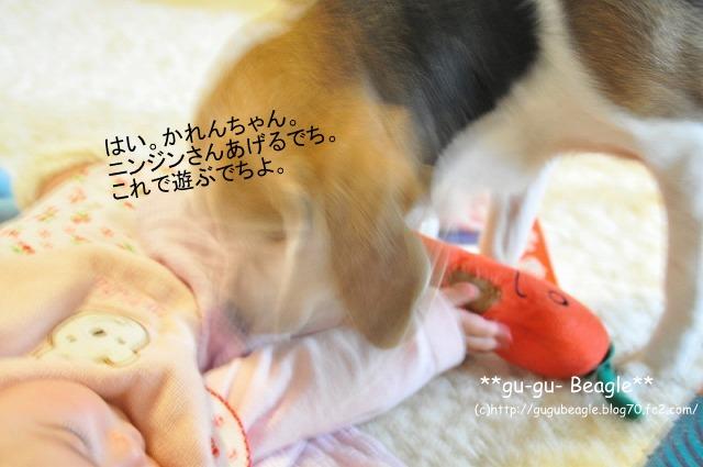 15_20120504230108.jpg