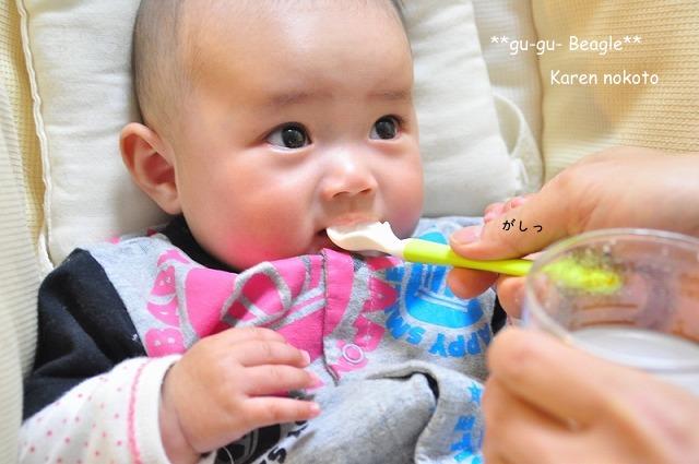 15_20120505234941.jpg