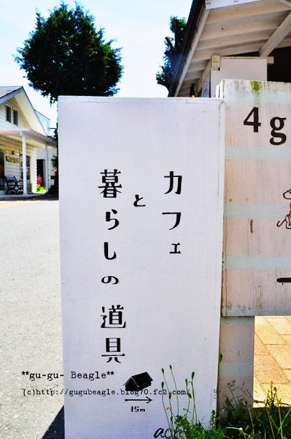 16_20120513231132.jpg
