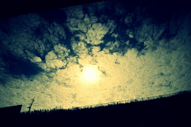 2_20121010102259.jpg