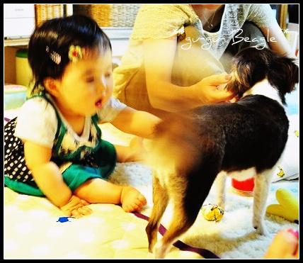 3_20120805212003.jpg