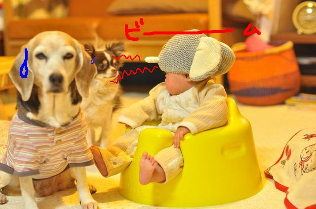40_20120407130850.jpg