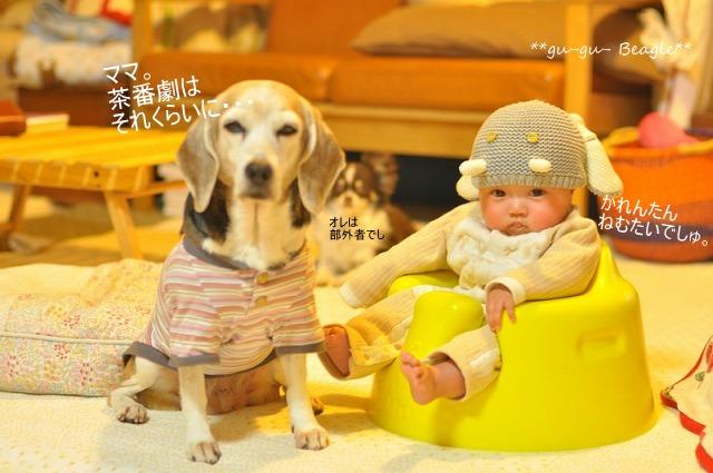 41_20120407130849.jpg