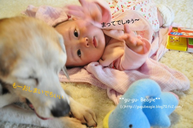 5_20120504224152.jpg