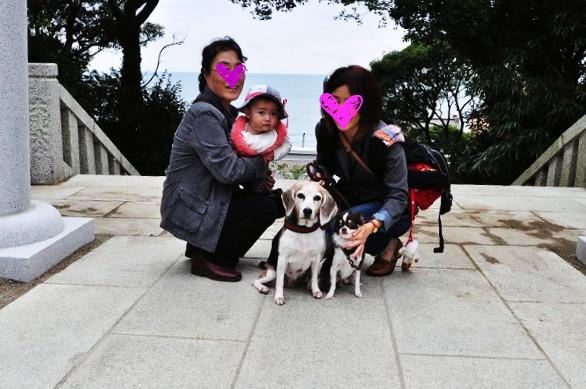5_20121010102709.jpg