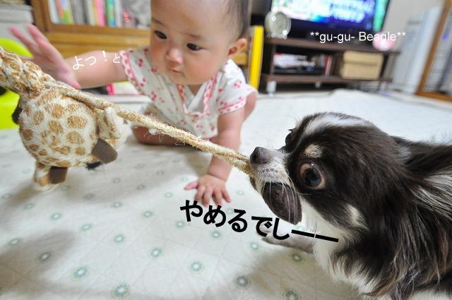 6_20120707235451.jpg