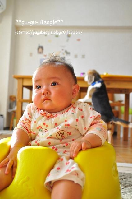 7_20120515163610.jpg