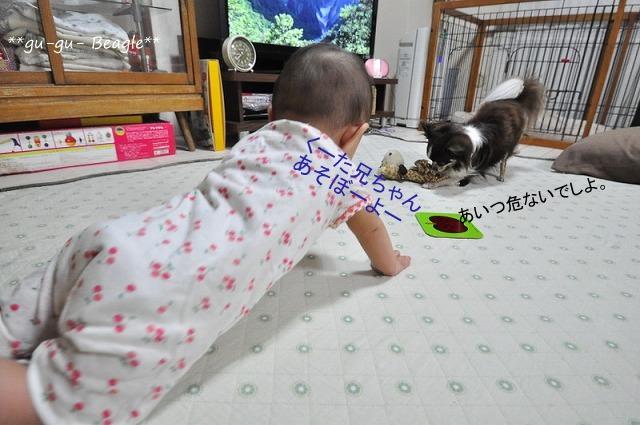 7_20120708000005.jpg