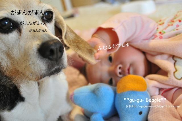 9_20120504225649.jpg