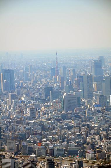 東京タワーだ!