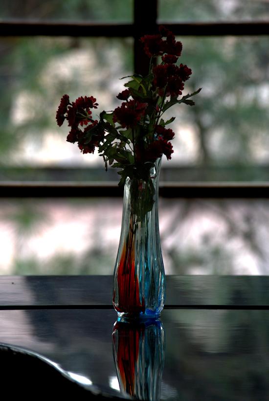 IMGP8574 -1花瓶blog