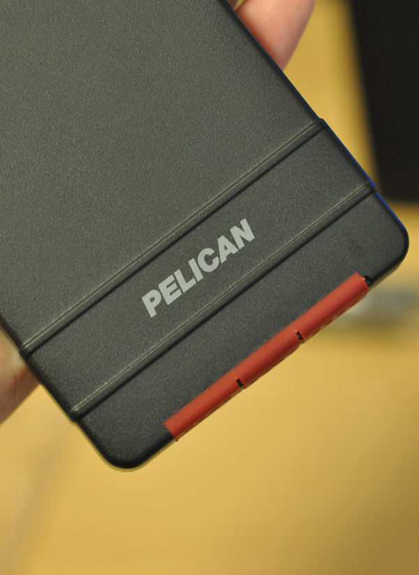 pelican (10)