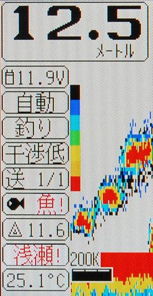 SF57_13.jpg