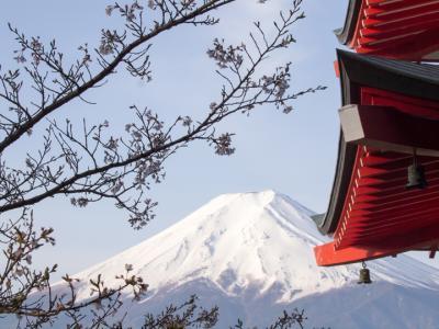 富士山と桜(2)