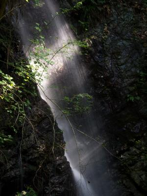 男滝(2)