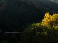 広瀬湖近辺の紅葉(2)