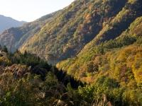 広瀬湖近辺の紅葉(3)