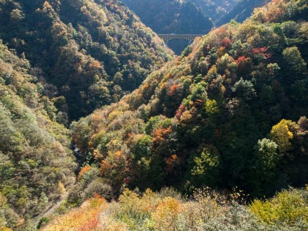 滝川渓谷の紅葉(2)