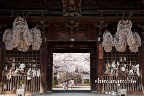 shimanami0522.jpg