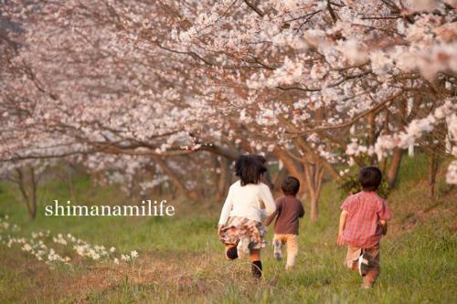 shimanami0630.jpg