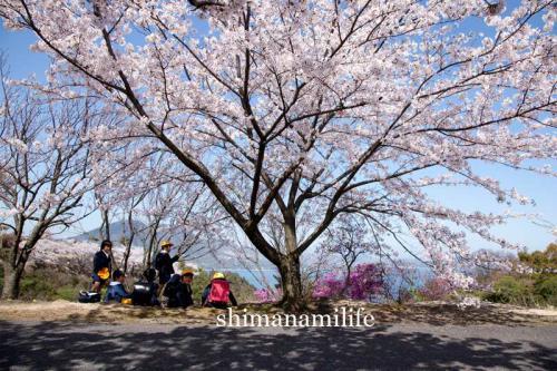 shimanami0741.jpg