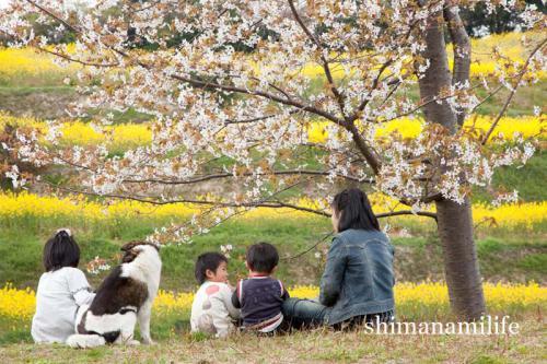 shimanami2712.jpg