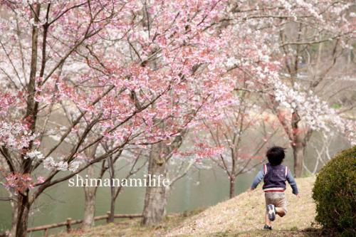 shimanami2780.jpg