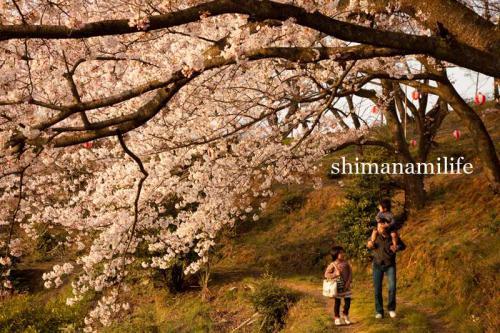 shimanami3019.jpg