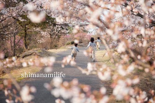 shimanami5374.jpg